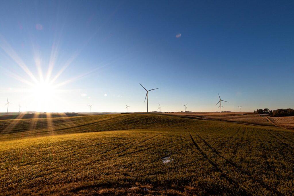 Levi - Graduate of Northwest Renewable Energy Institute