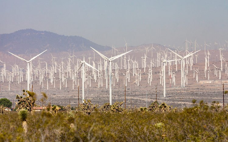 World's-Largest-Wind-Farms-Mojave